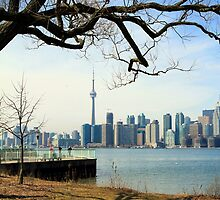 Toronto Downtown Skyline by Valentino Visentini