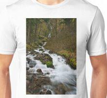 WAHKEENA FALLS, COLUMBIA RIVER GORGE Unisex T-Shirt