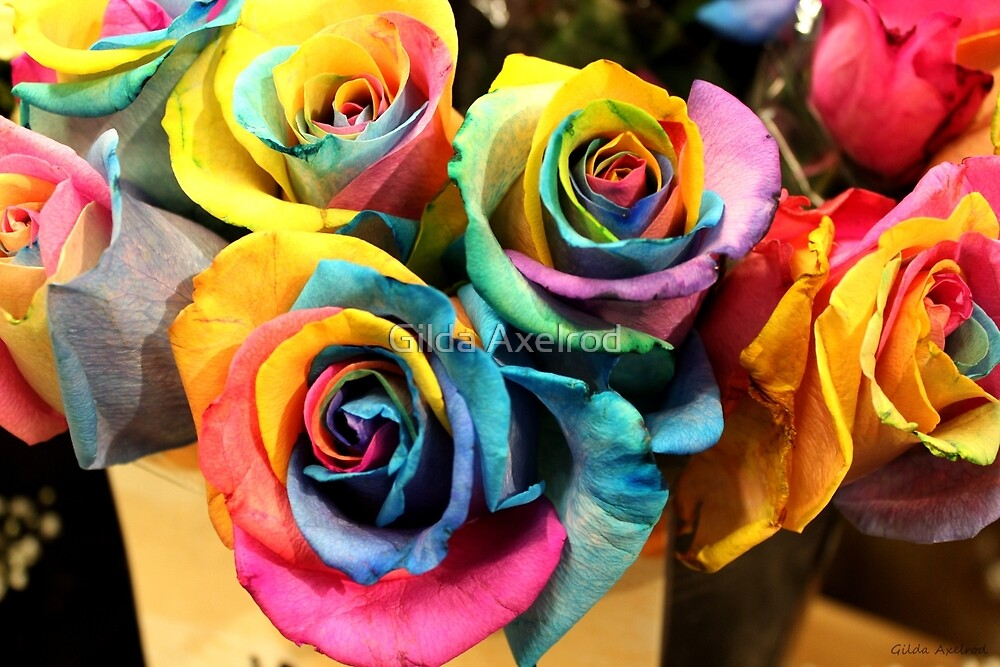 Colorful bouquet of rainbow roses by gilda axelrod for Where can i buy rainbow roses