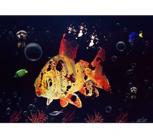 Corpse Fish Photographic Print
