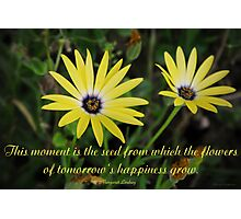 This moment is the seed  Photographic Print