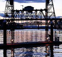 Bridge by Matt Amott