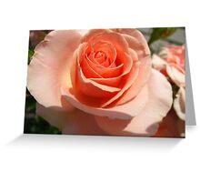 Peach meringue Greeting Card