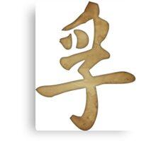 Truth Kanji Canvas Print