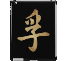 Truth Kanji iPad Case/Skin