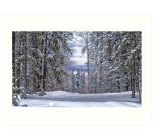 Winagami Lake Provincial Park Art Print