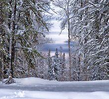 Winagami Lake Provincial Park by Lindarich