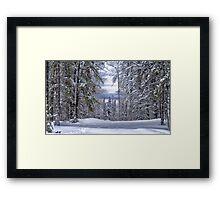 Winagami Lake Provincial Park Framed Print