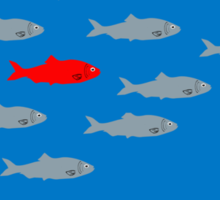 This is not a red herring. Ceci, n'est pas une diversion.  Sticker