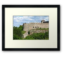 view fortress of Ivangorod  Framed Print