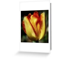 """Tulip Time"" Greeting Card"