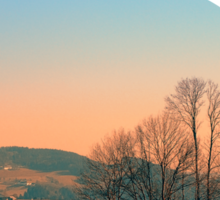 Trees, panorama and sunset | landscape photography Sticker