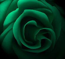 Emerald Rose by DavidWHughes
