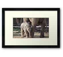 Me and My Mum Framed Print