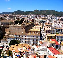 The Roofs Of Ibiza Town by Fara