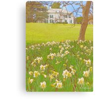 The Mansion in Spring Canvas Print