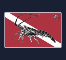 Dive Spiny Lobster by Fl  Fishing