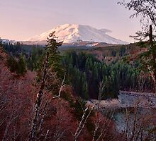 Mount Saint Helens, South View by Alexphotospdx