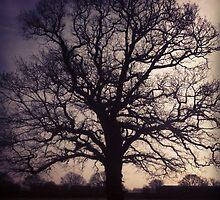 Tree by Ritkey