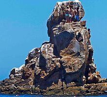 Jumping Rock by phil decocco