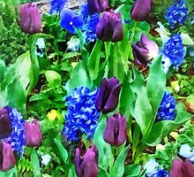 Spring Garden in Shades of Purple by Susan Savad