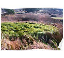Grassy Purple  Poster