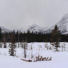 Misty Rockies (panorama) by zumi