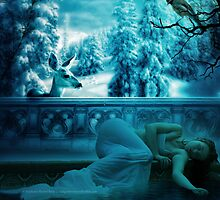 Feels Like Winter Without You by Stephanie Rachel Seely