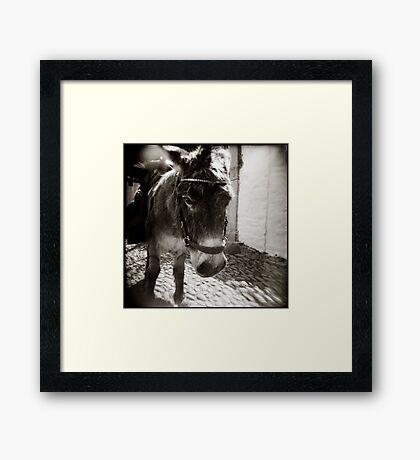 { Eeyore } Framed Print