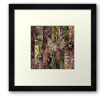 Super Natural No.5 Framed Print