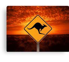 Be Careful Kangaroos! Canvas Print