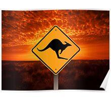 Be Careful Kangaroos! Poster