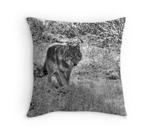 Lone Wolf - Yellow Eyes Throw Pillow