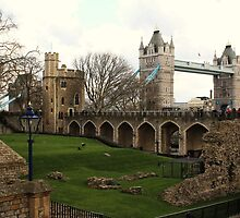 Tower Bridge by caterpillarcat