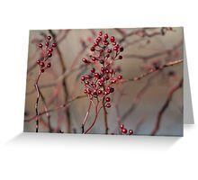 Pretty berries Greeting Card