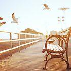 coney island by Julia Wang