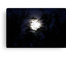 Moonburst Canvas Print