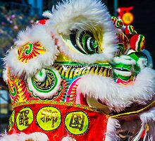 Chinese Dragon by Timothyoleary