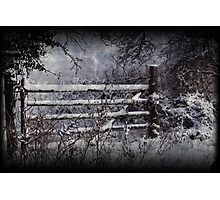 Winter Has Come Photographic Print