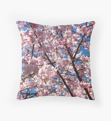 Lovely Cherry Blossoms  Throw Pillow