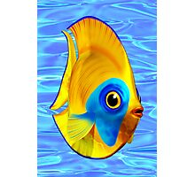 Tropical Fish on Clear Ocean Water 3D Photographic Print