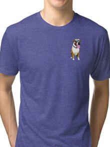 Cool Boxer Dog Tri-blend T-Shirt