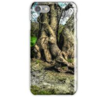 A tree in a pool of light iPhone Case/Skin