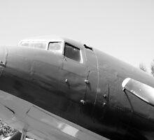 DC-3 Douglas Dakota by Robert Gipson