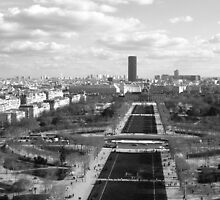 Black and white Eiffel Tower view  by Elysialily
