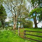 Grange Stone Circle Gate, Ireland by Gail S. Haile