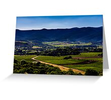 Vineyard landscape in summer Greeting Card
