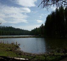 Idaho in spring series II Moose creek reservoir by prettymeadow