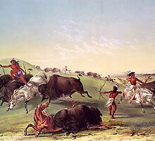 Catlin - Buffalo Hunt by William Martin