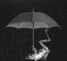 Goofy Black and White Frog with Umbrella in Rain Sticker